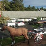 Foto de Saddle & Surrey Motel
