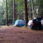 Nice large campsites