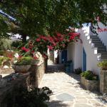 Photo of Studios Petra