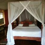 Luxury On Safari