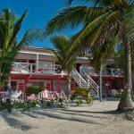 Foto di Conch Shell Inn