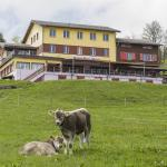 Photo of Hotel Rigi First