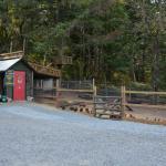 Benvenuto B&B - Chicken coop