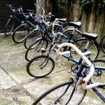 Retro Bike Tours