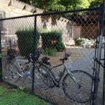 Locking the bikes up!