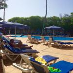 Pool area - always able to get a sun lounger!