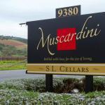 Muscardini Cellars