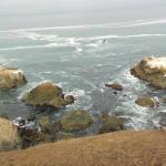 Foto de Inn of the Lost Coast