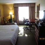 Hilton Garden Inn Seattle/Renton Foto