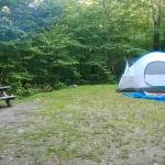 Mongaup Pond Campground Foto
