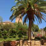 Foto de Jardín Botánico de Barcelona (Jardí Botànic de Barcelona)