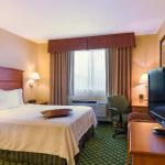1 Queen Bed - Accessible Guest Room