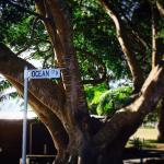 Ocean Street Diner