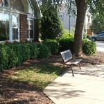 Outside With Bench