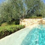 san gimignano vista dalla piscina
