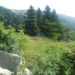 randonnée lac du Forlet