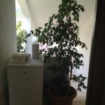 Foto di Apartments Rogosic