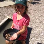 Panning for gold - Frontier Museum