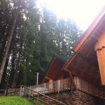 Vila Triglav at Pokljuka Foto