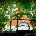 Photo of TIPI JUNGLA ecolodge