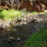 Jacobs Creek Retreat Foto
