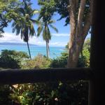 View from the porch at Casa Linda--jungle meets sea