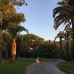 Gartenlandschaft bei Sonnenaufgang