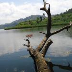 Mutanda Lake Resort-Kisoro Westenr Uganda