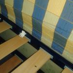 Des objets,restes de nourriture et moissisure sous le lit