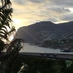 Landscape - Golden Residence Photo