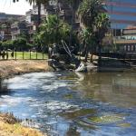 view of tar pit