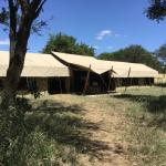 Photo of Ubuntu Camp, Asilia Africa