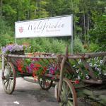Photo of Landhaus Waldfrieden