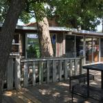 The patio is shaded by giant pecan trees