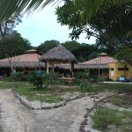Foto de Mariposa Vacation Homes