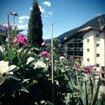 Photo of Belvedere