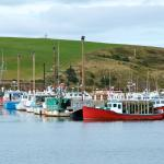 Fishing boats on the Cabot trail