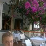 Photo of Hotel Fevro
