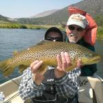 Big Green River brown trout!