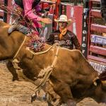 Foto de Jackson Hole Rodeo Grounds