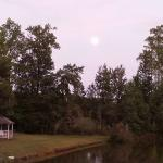 Moonrise over the Pond