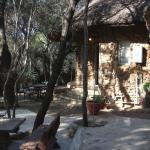 Cosy chalets at Mbewa Cabins