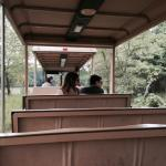 Take a free 30 minute tram ride around the grounds. Very fun!
