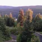 Swan Lake Cabins Foto