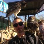 Fun with the owls!