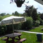 The garden area.