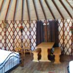 Torreya State Park Yurt