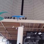 Photo of Surf & Turf Pattaya