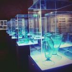 Alcune delle opere all'interno del museo!