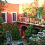 vista al jardín desde el 2 piso